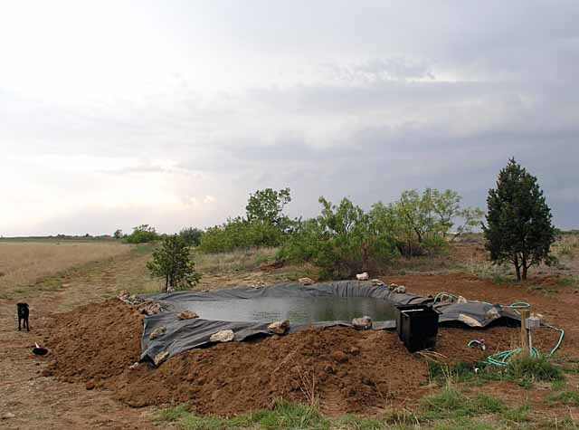 Digging A Pond