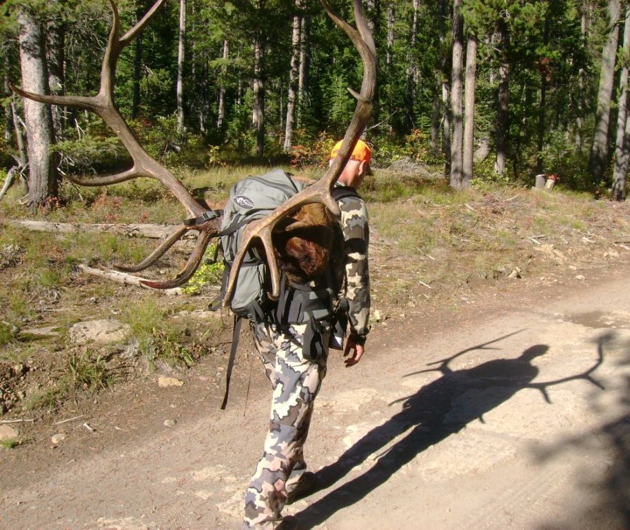 buying new pack [Archive] - Hunt Talk Forums
